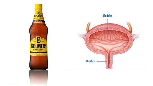 bulmers bladder